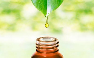 Formation aromathérapie en ligne